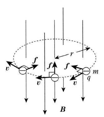 速度が磁界に垂直なときのローレンツ力